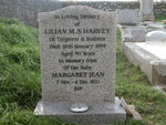 Lilian M S Harvey